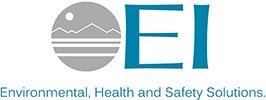 thumb_The-EI-Group-Logo[1]